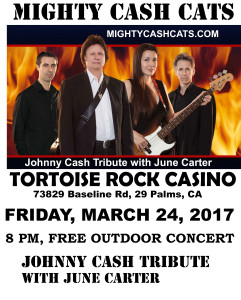 Tortoise-rock-march-24-2017